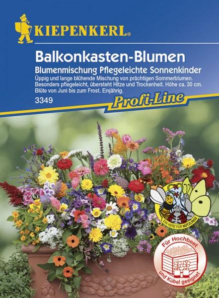 Balkonkasten Blumenmischung Pflegeleichte Sommerkinder