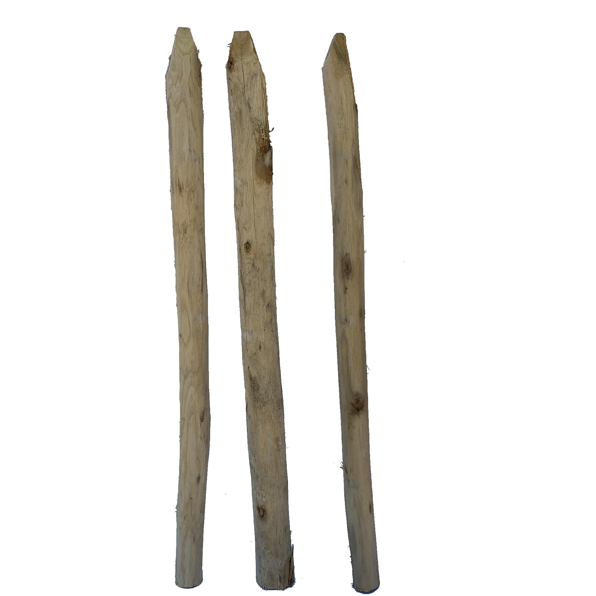 Einzelstaketen Robinienholz, 5-7cm/100cm