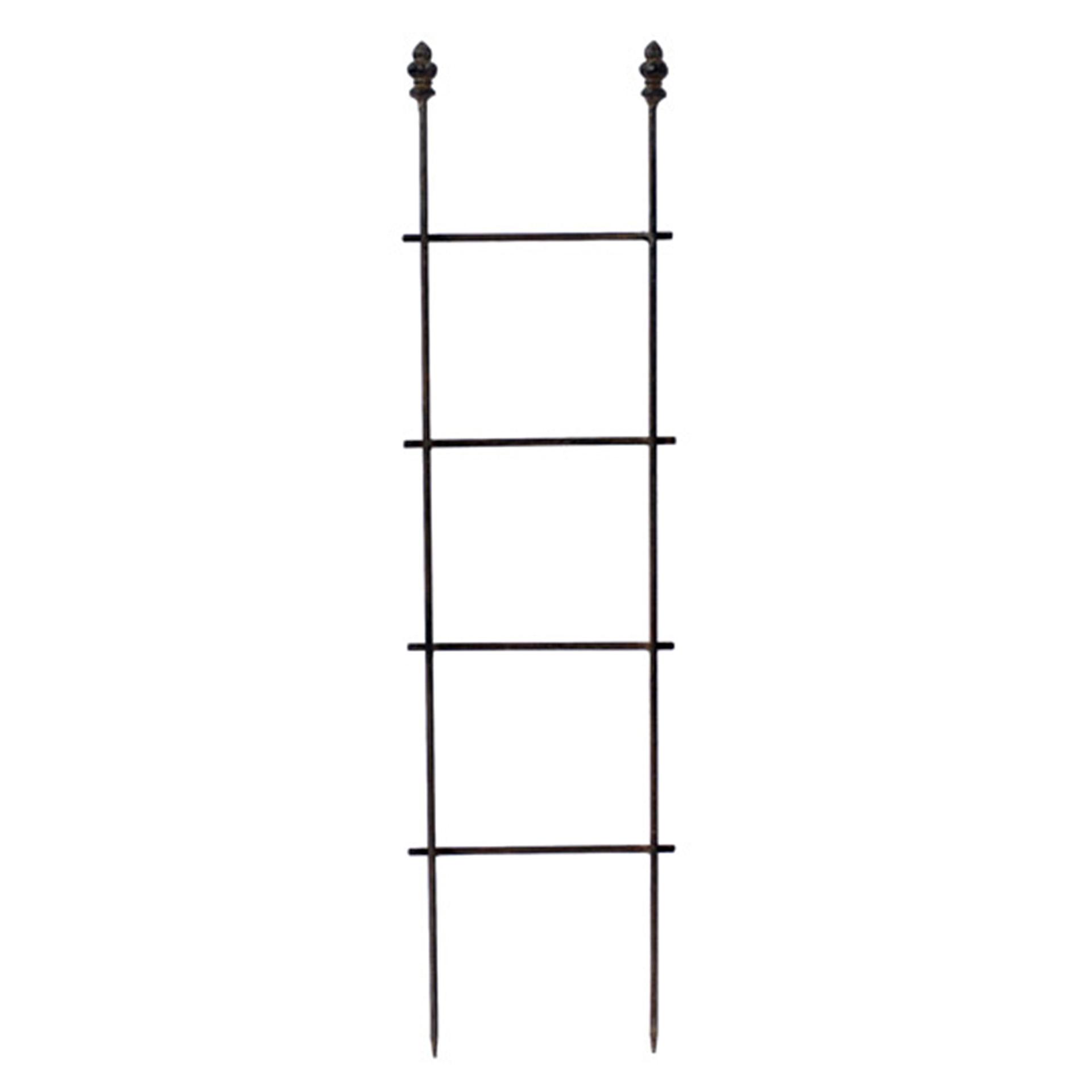 Rankgitter / Rankleiter 75/19/3cm