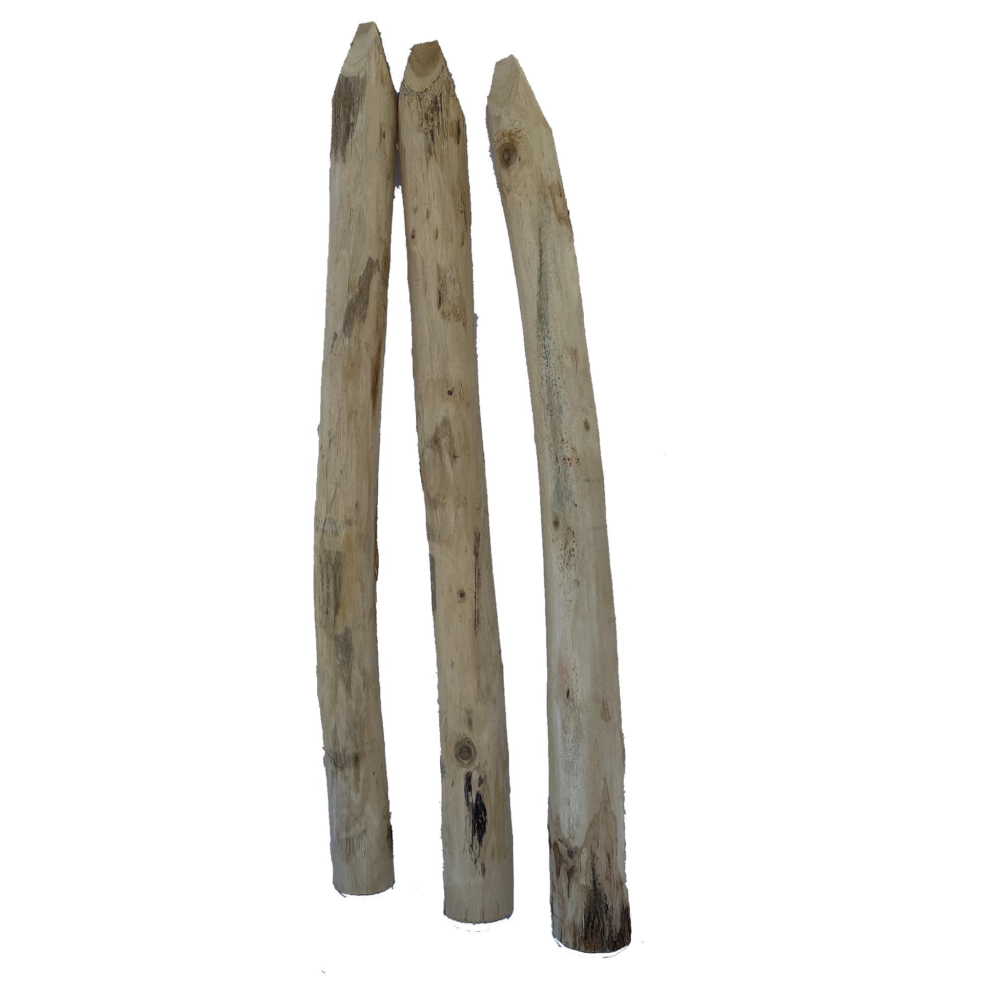 Einzelstaketen Robinienholz, 7-9cm/100cm